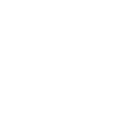 $30, $10 rebate on the Auto-mobile Unlimited